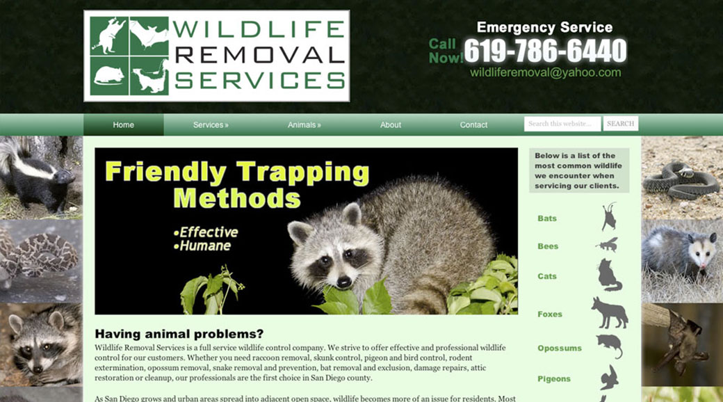 portfolio-Wildlife-Removal-Services